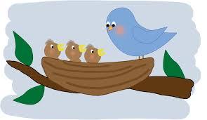 Sīki putni, mazi putni…